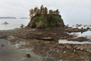 Island at low tide on Washington coast.