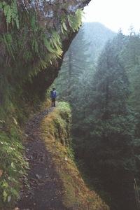 Eagle Creek Falls, 2002