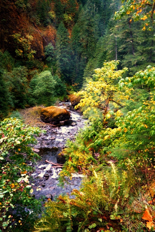 Eagle Creek Hike, 2002