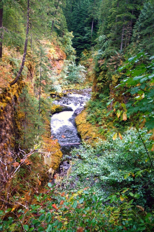 Eagle Creek Hike, Oregon, 2002