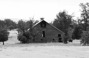 Old Barn in BW