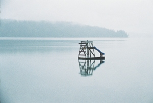Reflections on Quilcene Bay, Washington