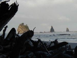 Washington Coast, Olympic Peninsula