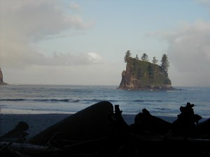 Small Island, Olympic National Park Wilderness Area, Washington State, 2002
