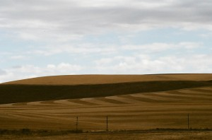 After the Wheat Harvest, The Palouse, Washington State, Fall 2009