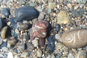 Beach Pebbles, June 2003