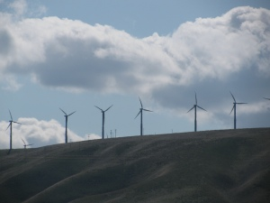 Wind Turbines, Wallula Washington, Spring 2010