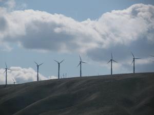 Wind Turbines, Wallula Washington, Spring 2010