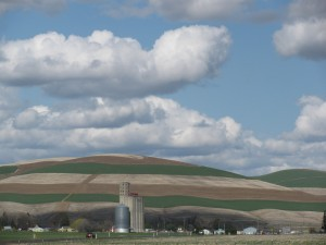 Waitsburg, Washington, Spring 2010