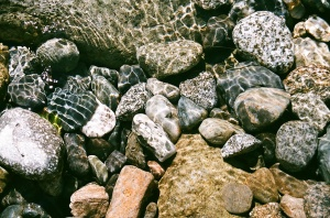 Stones in Beckler River, Washington, July 2010