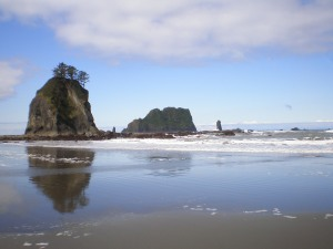 Low Tide & Wet Sand